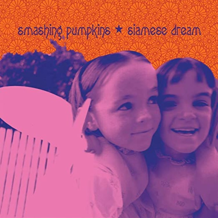 Image result for siamese dream
