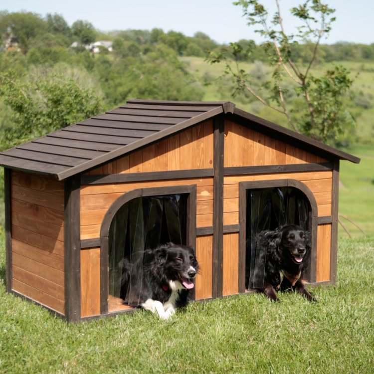 Duplex Dog House for Large Dogs