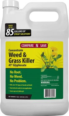 BEST WEED KILLER FOR LAWN