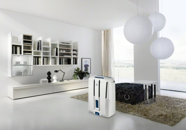 Best Whole House Dehumidifier