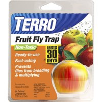 Terro Fruit Fly Trap Review | T2500