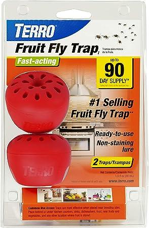 Amazon Com Terro T2502 Fruit Fly Trap 2 Traps Garden Outdoor