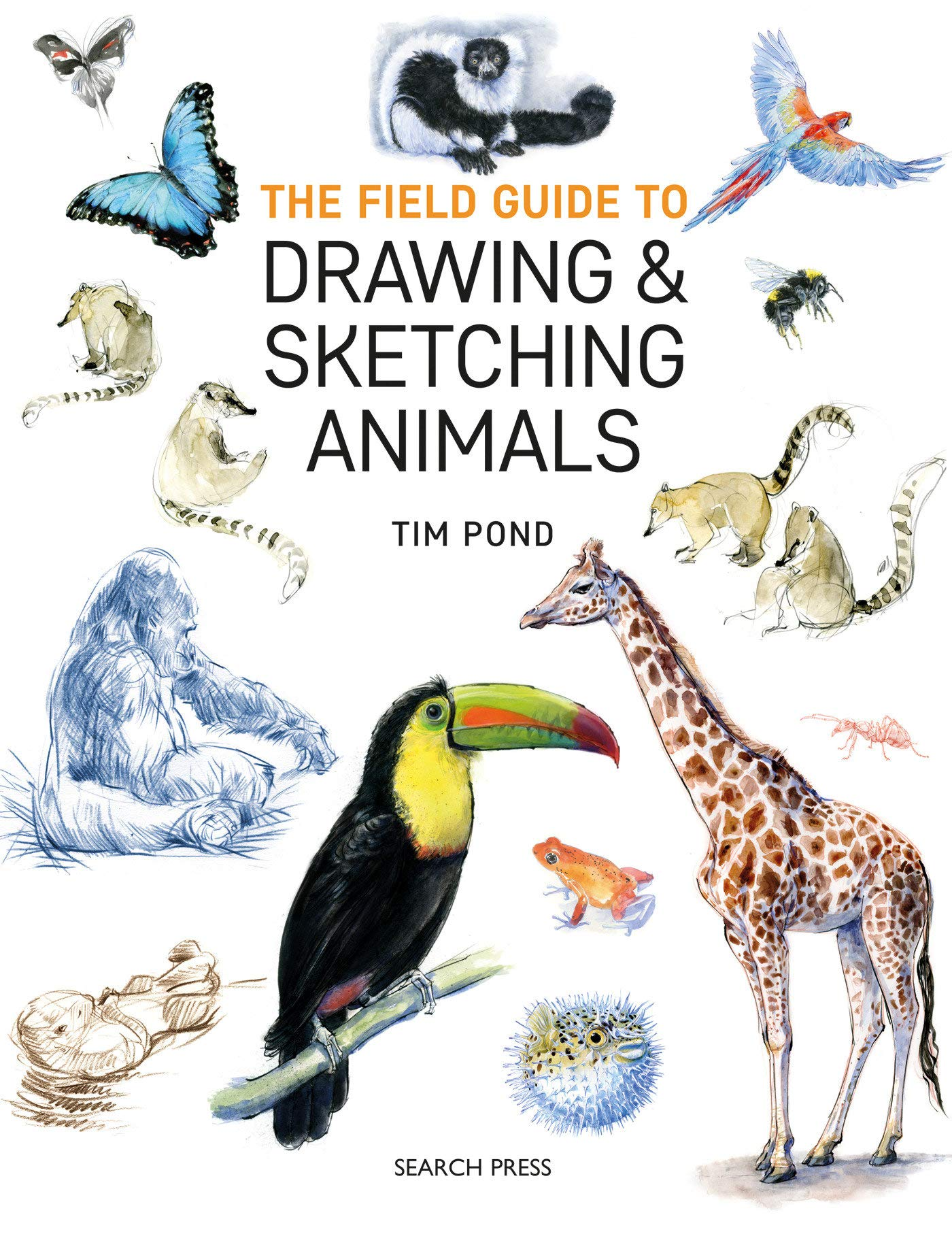 Amazon Com Field Guide To Drawing And Sketching Animals The 9781782215127 Pond Tim Books