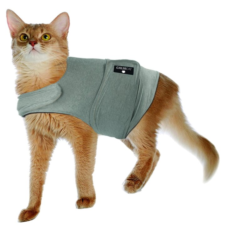 Calm Cat Calming Coat