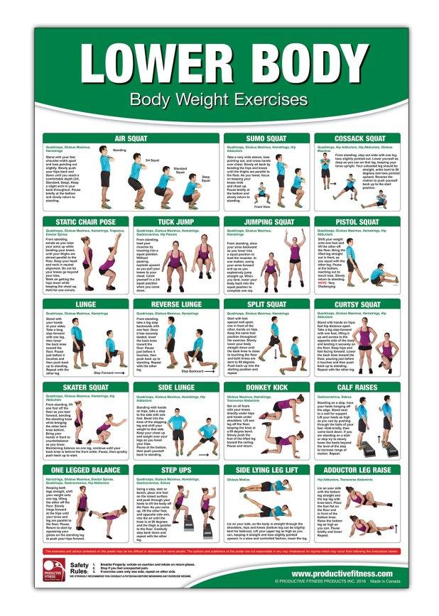 Bodyweight Training Poster Chart Lower Body Weight