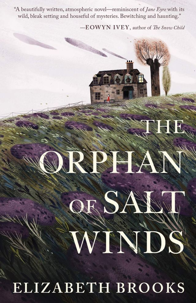 Amazon.com: The Orphan of Salt Winds: 27: Brooks