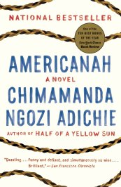 Image result for americanah book