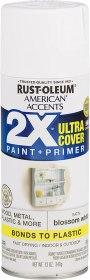 best paint for bathroom walls and ceiling - Rust-Oleum