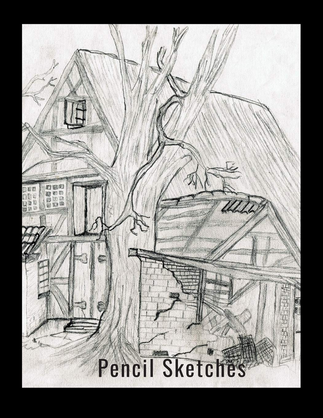 Buy Pencil Sketches Book Online At Low Prices In India Pencil Sketches Reviews Ratings Amazon In