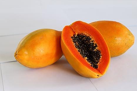 Creative Farmer Taiwan Papaya Lady Hybrid Pappaya Seeds Fruit ...