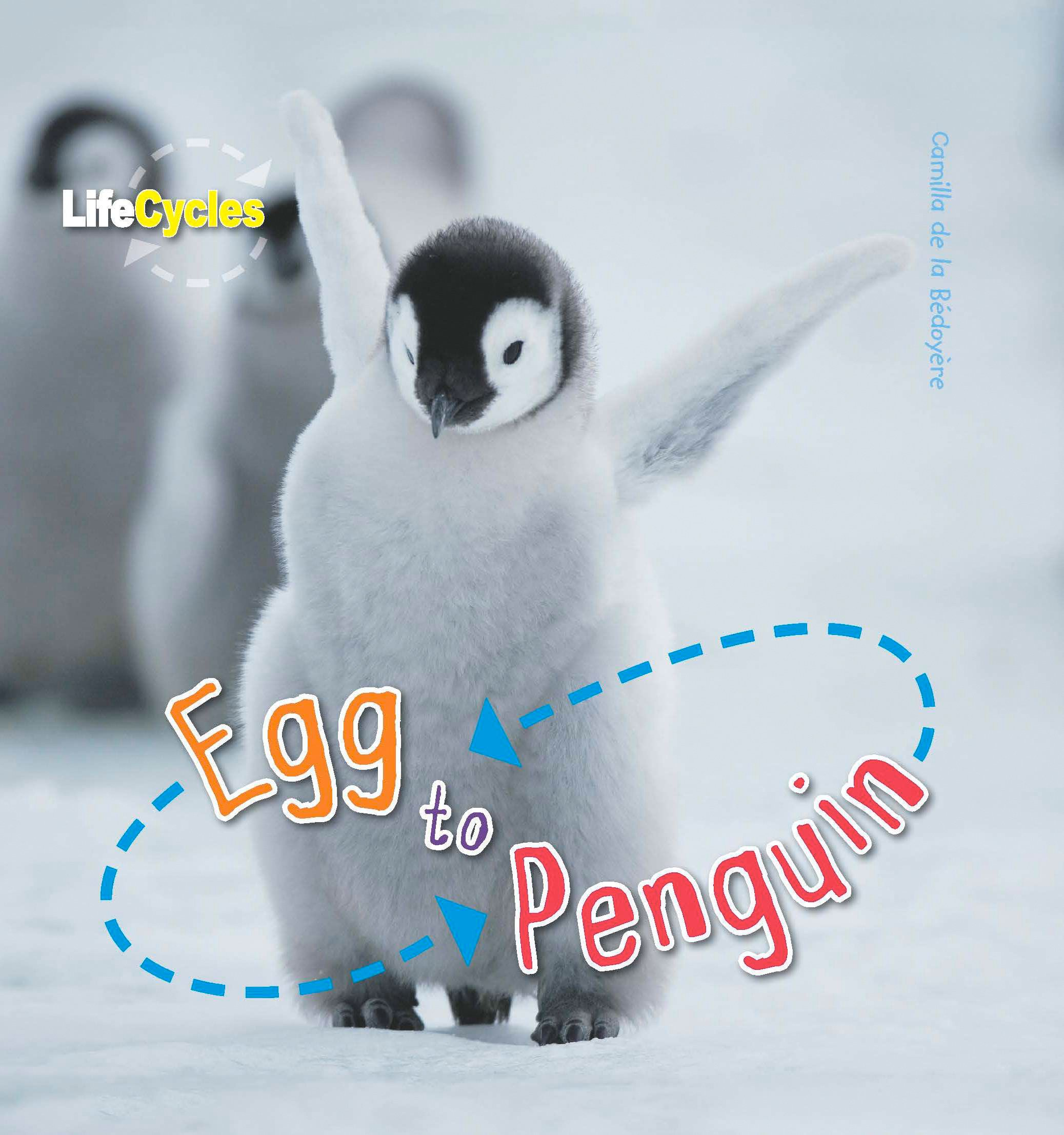 Life Cycles Egg To Penguin Amazon Co Uk De Le Bedoyere Camilla 9781848355835 Books