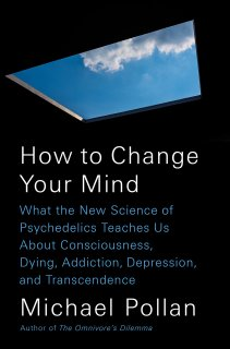 How to Change Your Mind Summary