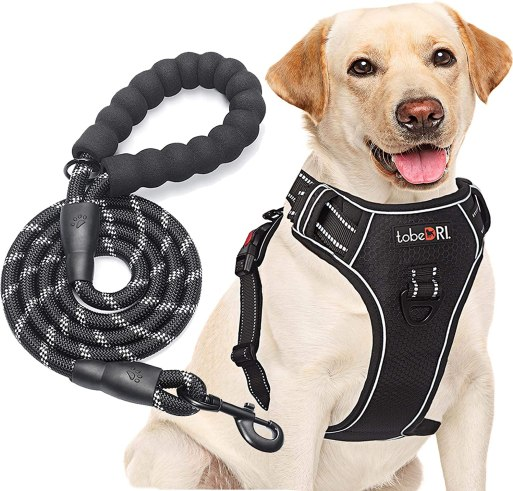 81zzhp13ipL. AC SL1500 Best Harness For Husky – A Throughout Buying Guide With Recommendations