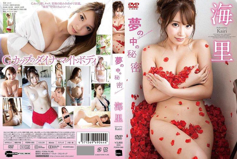 海里/夢の中の秘密 [DVD] 海里 (出演) 形式: DVD