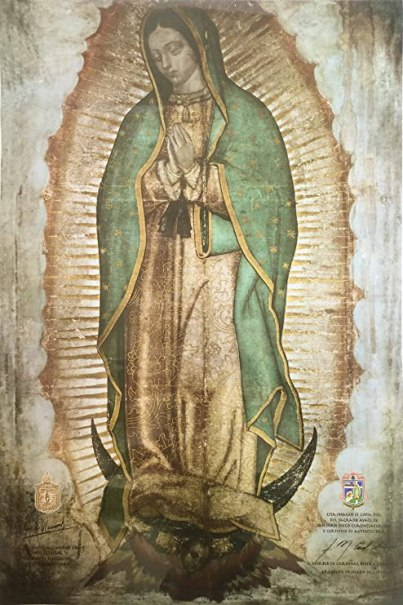 Image result for our lady of guadalupe tilma image