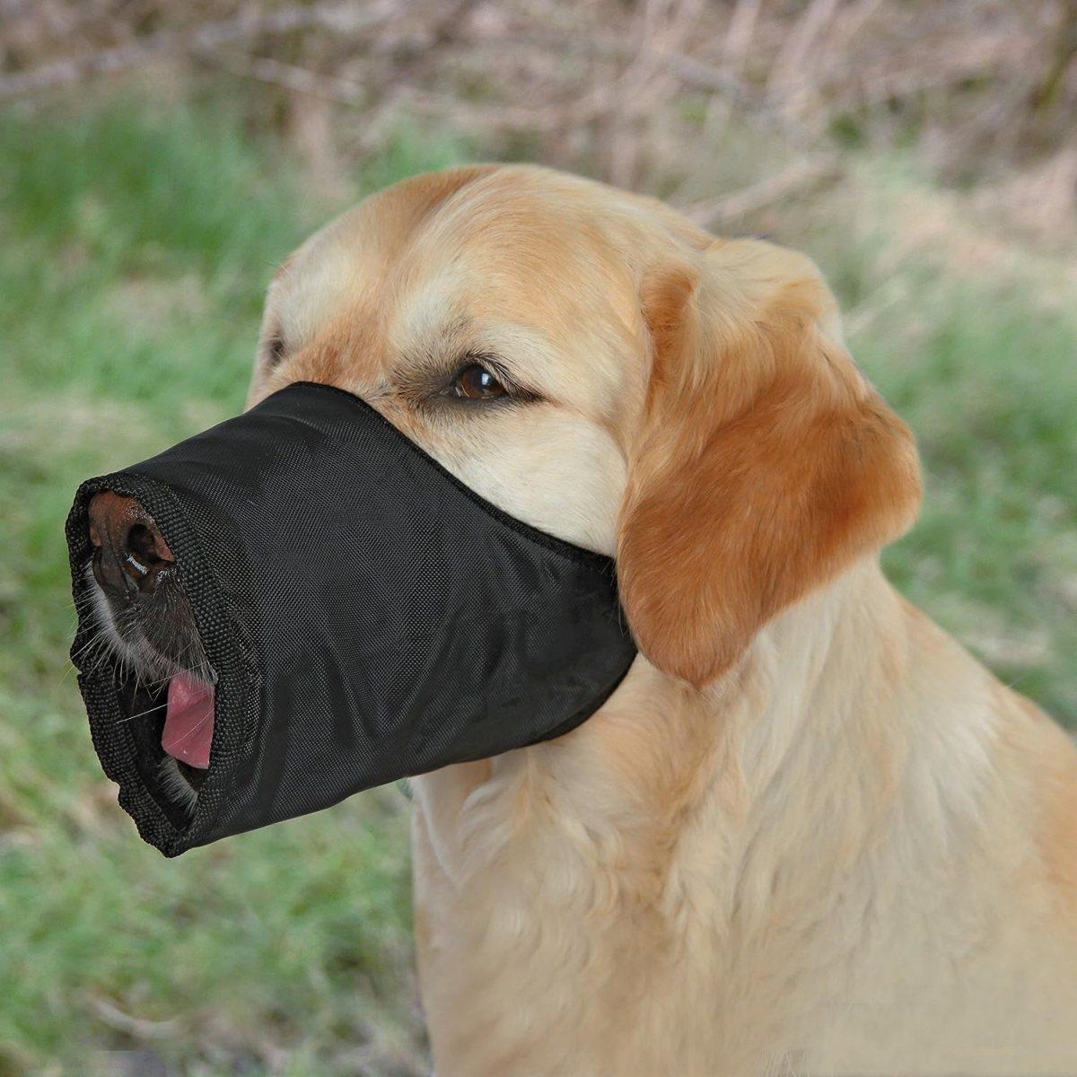 Trixie Bozal para perros, Nylon, XS-S, Negro
