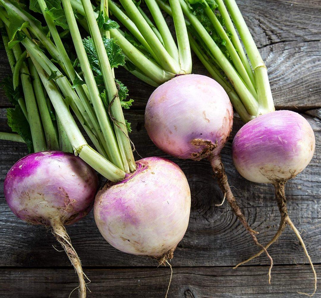 Amazon.com : Sweet Yards Seed Co. Organic Turnip Seeds 'Purple Top ...