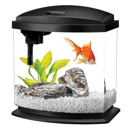 Aqueon LED MiniBow Aquarium Black Friday Deal 2019