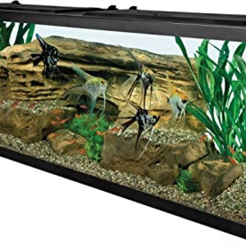 Tetra 55 Gallon Aquarium Kit