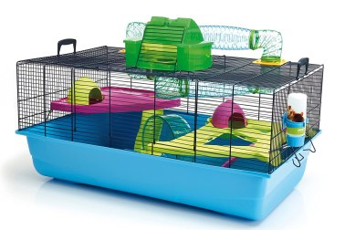How To Choose The Best Cage For A Syrian Hamster » Modern