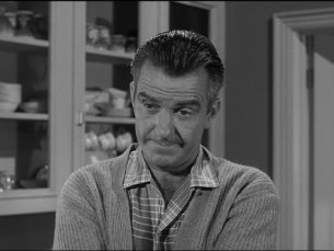 Image result for ward cleaver
