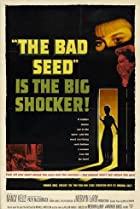 Image of The Bad Seed