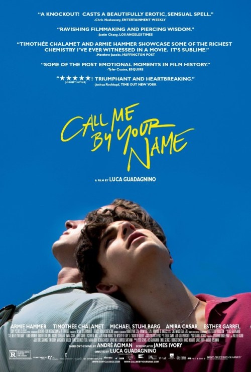 November 2017 Adaptations - Call Me By Your Name Movie Poster