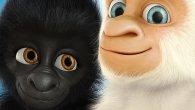 Permalink to Snowflake, the White Gorilla