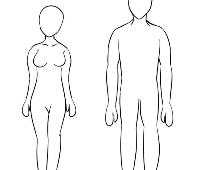 Free To Use Male And Female Base By Animerocks