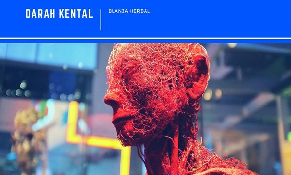 Obat Pengencer Darah Kental Herbal