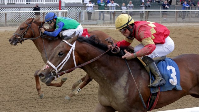 Horse Racing Picks for Wednesday, June 3: Best Bets, Exotics and ...