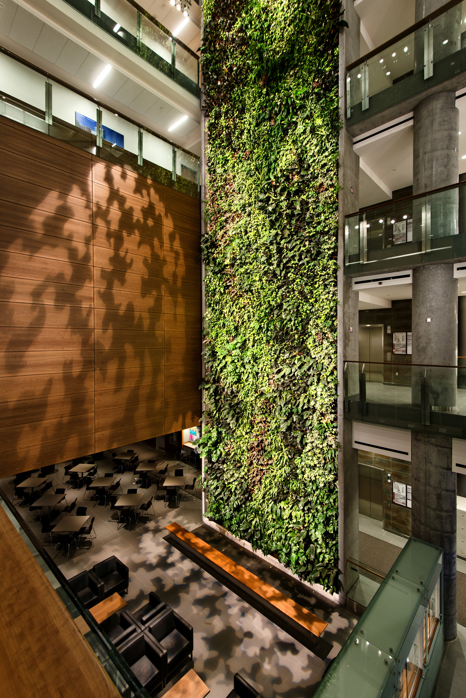 Gallery Of University Of Ottawa KWC Architects Diamond