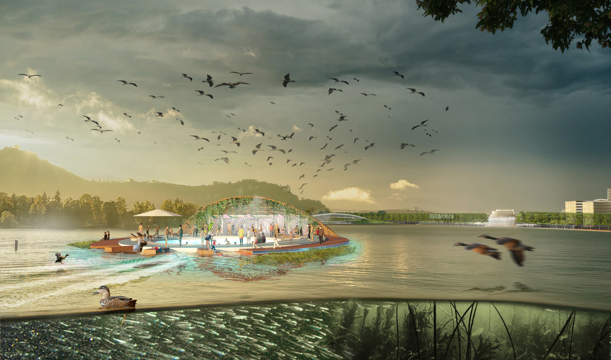 Gallery Of Urban Ecosystem Design Named Winner Of Lion