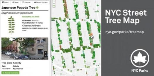 via  NYC Parks