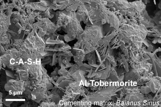 This microscopic image shows the lumpy calcium-aluminum-silicate-hydrate (C-A-S-H) binder material that forms when volcanic ash, lime and seawater mix. Platy crystals of Al-tobermorite have grown amongst the C-A-S-H in the cementing matrix.. Image Courtesy of Marie Jackson