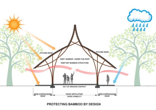 Protecting Bamboo Diagram