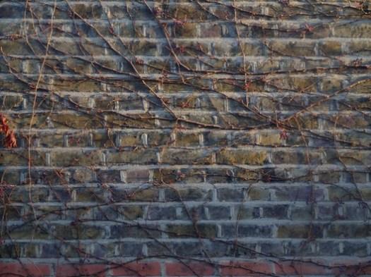 Brick 06. Image © <a href='https://www.flickr.com/photos/brettpatterson/4071752267/in/photolist-7cNN6i-ryGF-4u614k-6dw5AX-awZndg-aDyyf-ryGW-gS1y8-bJHTEv-bkM38r-pRhC6R-9jL9P-YpQyQS-FxAjsX-doUYHa-4uy4Gu-8v6sF9-SGezNB-bMmBv6-4ktgLT-bpu5rn-4CcBh7-p6vZin-7SyGkM-9mdYKn-5RNgHQ-dU9Ded-75Li6L-cKtjrq-6V8fcE-rSeVY-uAb8Wg-4VqXX8-BzNfQS-T6b3U-8RSLQS-b9U4GX-76Q13c-KpHeMb-9Teq4V-9yBXpU-7R6fbv-9o9j1J-9M6cGb-kwYhjn-XeYTdH-cDNQ5b-5x3CMo-ekdU9D-2duXYP'>Flickr user Brett Patterson</a> licensed under CC BY-NC 2.0