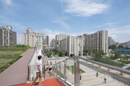 North Roof and Exterior Ramp. Image © Fangfang Tia