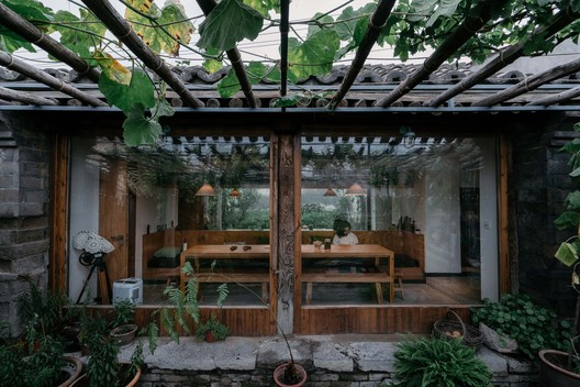 plants in the yard and dining room. Image © Yumeng Zhu