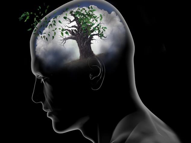 Che cosa è e dove si trova la nostra coscienza?