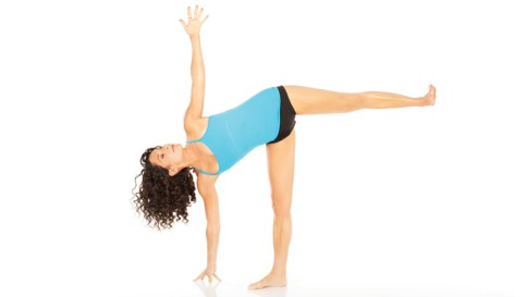 Image result for 9. Half Moon Pose