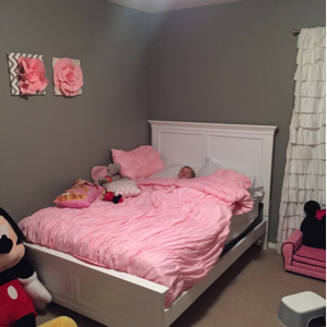 Nursery paint    December 2015 Babies   Forums   What to Expect We did my daughter s room in Fashion Grey by Behr and it s perfect  I hear  Elephant Skin is a good one too