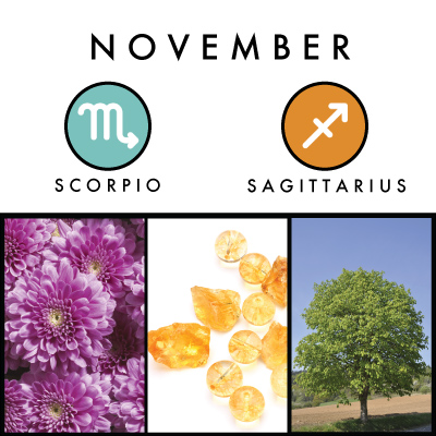 A Little About November Birth Symbols Coven Life