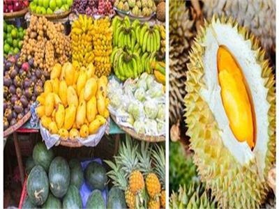 صور 12 فاكهة نادرة ورائعة لـ تايلاند بوابة أخبار اليوم الإلكترونية
