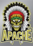 Afbeeldingsresultaat voor apache free logo