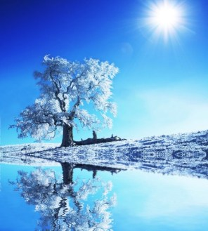 Winter landscape free stock photos download  15 379 Free stock     Winter landscape free stock photos download  15 379 Free stock photos  for  commercial use  format  HD high resolution jpg images