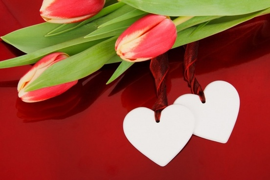 Love flower free stock photos download  12 219 Free stock photos     two hearts and flowers