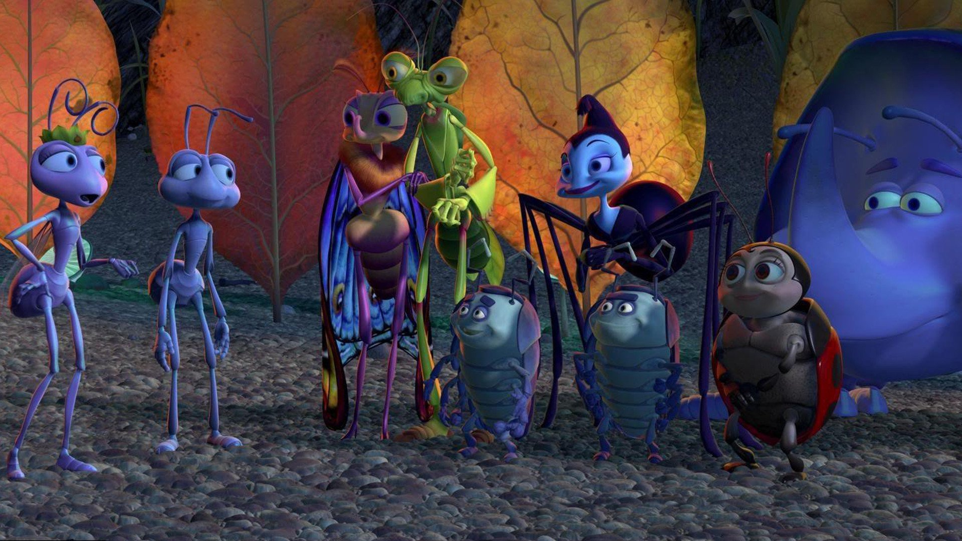 A Bug S Life Hd Wallpaper