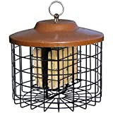 Stokes Select 38269 Squirrel Proof Double Suet Feeder
