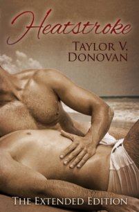 Heatstroke by Taylor V. Donovan Book Cover
